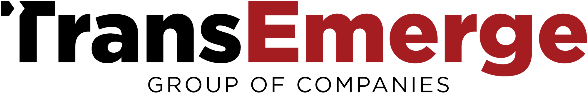 Trans-Emerge-Group-Logo copy