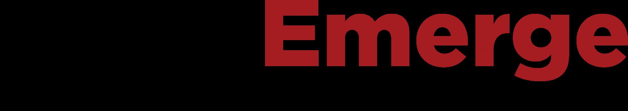 Trans Emerge Logistics Logo